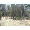 продам земельный участок 120 соток Омский район п.    Чернолучье